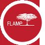 flame-logo-image